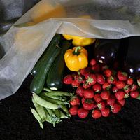 Extra tjock fiberduk för växtskydd och drivning av växter