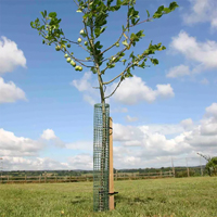 Flexi-Mesh stamskydd-Fleximesh Stamskydd för träd