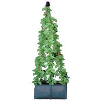 Odlingssäck med plats för växtstöd, Odlingssäck för olika sorters baljväxter