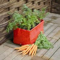 Odlingssäck för morötter, 2-pack-odlingssäck för morötter