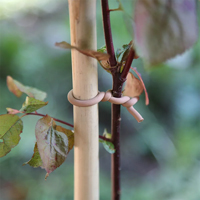 Uppbindning med gummiklädd ståltråd