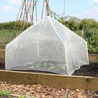 Lanterna minidrivhus - Micromesh, Uppfällbart odlingsskydd för köksträdgården