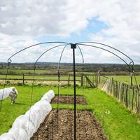 Växtstöd, Parasol Planter Support, stöd för klätterväxter