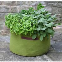 Odlingssäck Vigoroot Herb Planter-Vigoroot odlingssäck för kryddor och blommor