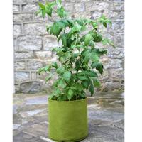 Odlingssäck Vigoroot Potato/Tomato, Vigoroot odlingssäck för tomat och potatis
