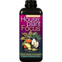 Krukväxt Focus, 1L -Gödning - näring till krukväxter Houseplant Focus