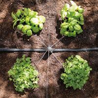 Bevattningsset till 13 mm slang, Bevattningsset för trädgården för 13mm slang.