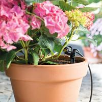 Droppbevattningsset till 4 mm slang, Droppbevattningsset till tväxthus och terrass.