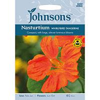 Indiankrasse 'Whirlybird Tangerine', Tropaeolum majus