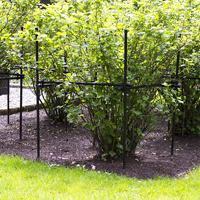 Buskstöd för vinbärsbuskar mfl