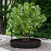 Planteringskant rak svart, 120x1150 mm, Växtodling med cirkelformad trädgårdskant