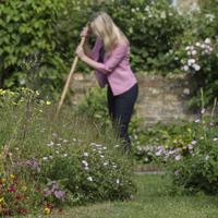 Kantrensare med långt skaft, Kantrensningsredskap för trädgården