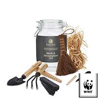 Presentförpackning Herb-Houseplant kit Kent&Stowe-Miniplanteringskit julklapp