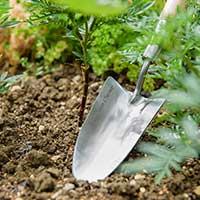 Blad på planteringsspade