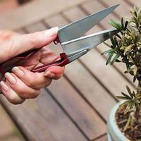 Formklippningssax, Mini snips, Trimsax för örter och bonsai i rostfritt stål