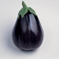Aubergine Black Beauty, organic-Ekologiskt frö till Aubergine Black Beauty