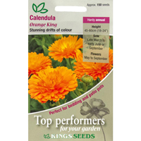 Ringblomma, Calendula Orange King, Fröpåse till RIngblomma, Orange King