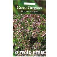 Kungsmynta, grekisk oregano-Frö till Kungsmynta, grekisk oregano från Suffolk Herbs