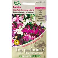 Lobelia, Pendula Cascade Mixed, Fröpåse till Lobelia, Pendula Cascade Mixed