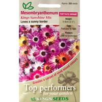 Doroteablomma, Mesembryanthemum Kings Sunshine Mix, Fröpåse till Mesembryanthemum, Kings Sunshine Mix