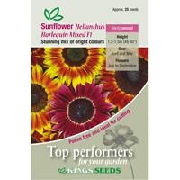 Solros, Sunflower Harlequin Mixed F1, Fröpåse till solros Sunflower, Harlequin Mixed F1
