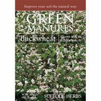 Fröpåse till gröngödsel, Bovete/Buckwheat