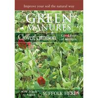 Fröpåse till gröngödsel, Rödklöver/Crimson Clover
