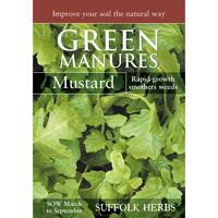 Gröngödsel - Vitsenap/Mustard, Fröpåse till gröngödsel, Vitsenap/Mustard