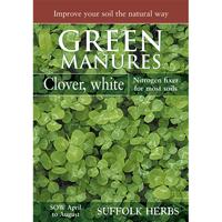 Gröngödsel, Vitklöver/White Clover, Fröpåse till gröngödsel - Vitklöver/White Clover