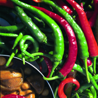 Chili, Long Slim-Fröer till Chili, Long Slim