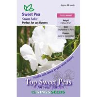 Luktärt, Swan Lake, Fröpåse till luktärt, swan lake