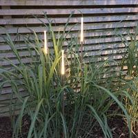 Dekorativ trädgårdsbelysning Straw 1-2-3