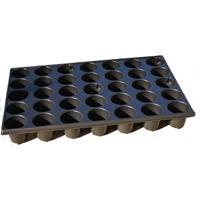 Pluggbrätte med 35 celler-Brätte i proffskvalitet med 35 celler för hydrokultur eller såjord