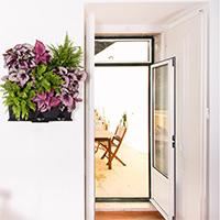 växtvägg med krukväxter i köket