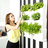 Växtvägg för inomhusodling med Minigarden One, vit