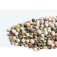 Groddmix med bönor, Ekologiskt frö till groddning och skott bönmix