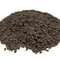 Groddfrö Nigella-Ekologiskt frö till groddning och skott nigella
