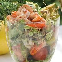 Groddar Mungböna - Primo Vitamino-Ekologiskt frö till groddar - Mungböna