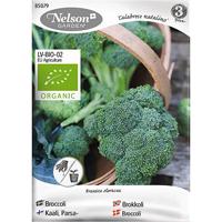 Broccoli Calabrese natalino, Organic-Ekologiskt frö till broccoli, Calabrese natalino