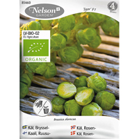 Brysselkål Igor F1, Organic-Ekologiskt frö till brysselkål Igor, F1
