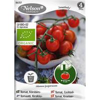Körsbärstomat Sweetbaby, Organic-Ekologiskt frö till körsbärstomat, Sweetbaby