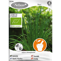 Gräslök Staro, Organic-Ekologiskt frö till vanlig gräslök, Staro