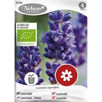 Lavendel, organic