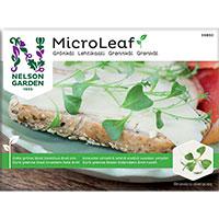 Micro leaf, Grönkål 'Jagallo Nero', Frö till mikroblad Grönkål