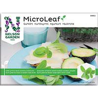 Micro leaf, Gurkört, frö till micro leaf gurkört