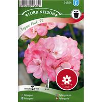 Pelargon Inspire Pink F1,