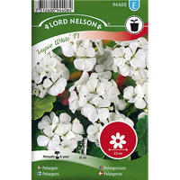 Pelargon Inspire White F1,