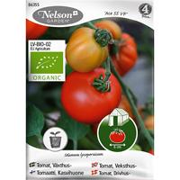 Tomat Ace 55 VF, Organic-Ekologiskt frö till växthustomat, Ace 55 VF