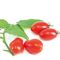 Odlingsset, Easy To Grow, Tomato, Odlingsset för fröer - tomater