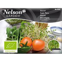 Groddar Broccoli - Primo Vitamino,